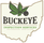 BUCKEYE INSPECTION SERVICES